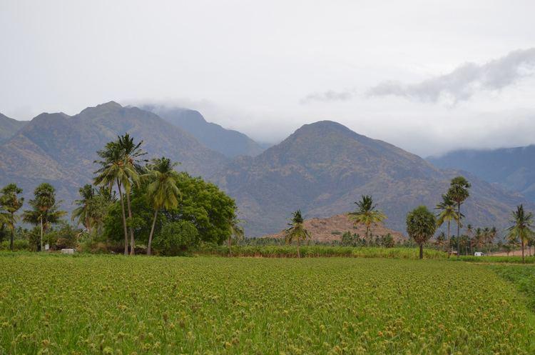 Tenkasi Beautiful Landscapes of Tenkasi