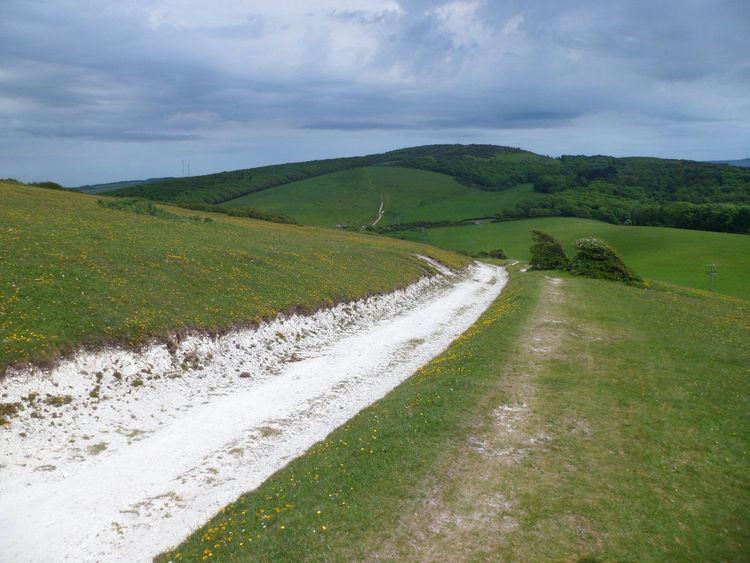 Tennyson Trail Afton Down walk as part of the Tennyson Trail