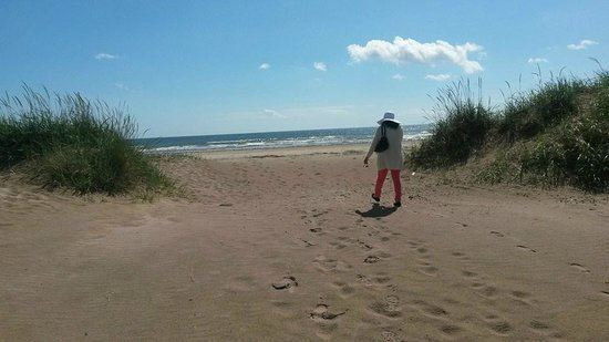 Tentsmuir Forest Tentsmuir Forest Tayport Scotland Top Tips Before You Go
