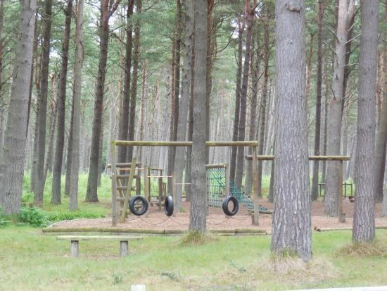 Tentsmuir Forest Crepe Shack in Tentsmuir Forest Picture of Tentsmuir Forest