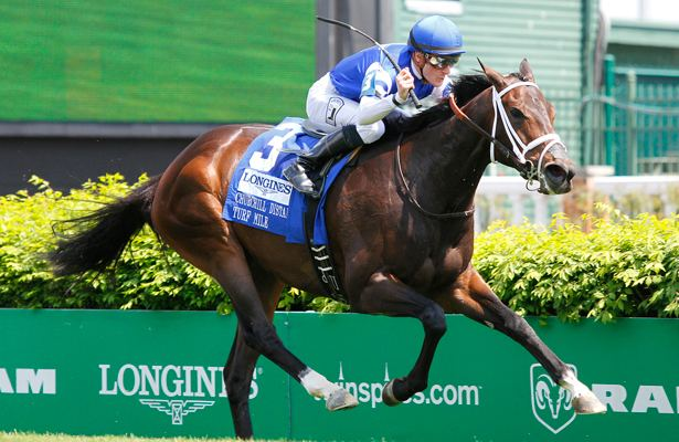 Tepin (horse) Tepin to Take On Males in BC Mile Horse Racing Nation