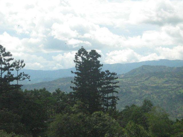 Tequendama Province