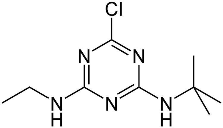 Terbuthylazine httpsuploadwikimediaorgwikipediacommons77
