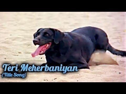 Teri Meherbaniyan Title Video Song Shabbir Kumar Teri
