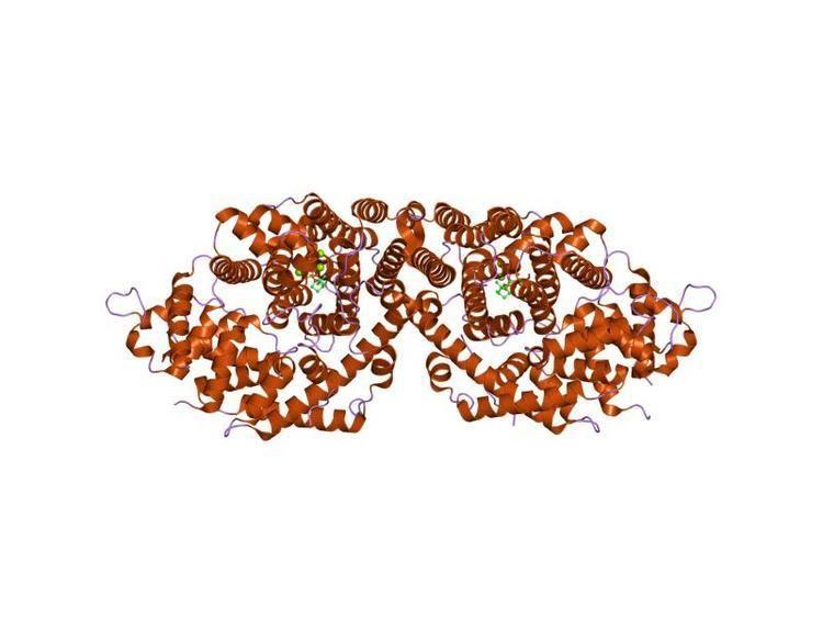 Terpene synthase N terminal domain