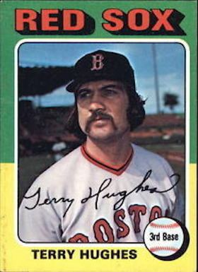 Terry Hughes (baseball) Terry Hughes Society for American Baseball Research