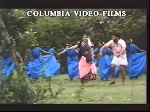 Thaai Manasu movie scenes Thaai Manasu Thoothuvalai Ilai Arachi tamil hd mp4 song