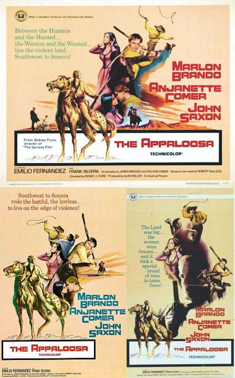 The Appaloosa The Appaloosa 1966 My Favorite Westerns