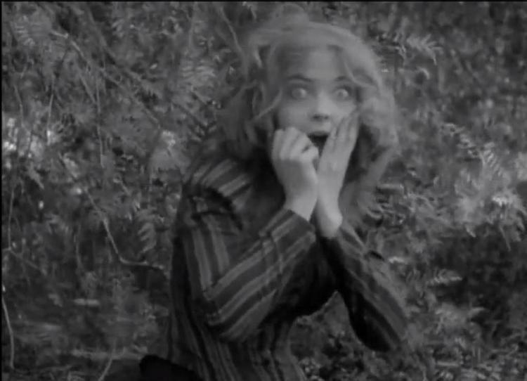 The Battle at Elderbush Gulch movie scenes The Battle at Elderbush Gulch 1913 Directed by D W Griffith