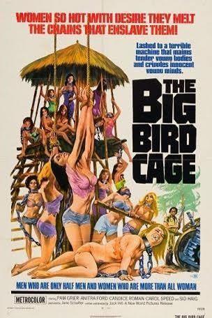 The Big Bird Cage t1gstaticcomimagesqtbnANd9GcTiaSUuQtG5zm1CxS