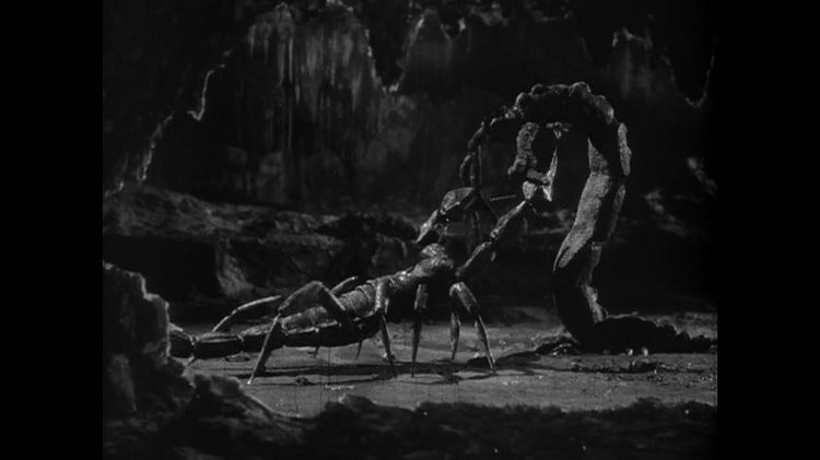 The Black Scorpion (film) movie scenes The battle is fast and surprisingly gory Especially while the scorpions are chopping up and eating the worm The meal is interrupted when the biggest