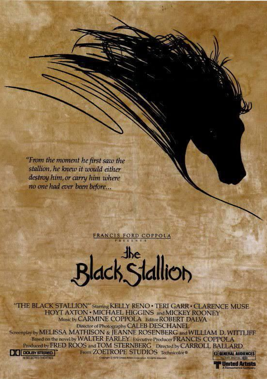 The Black Stallion (film) t3gstaticcomimagesqtbnANd9GcQfYSLzVA05zzQhC