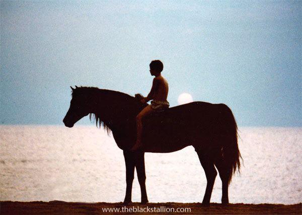 The Black Stallion (film) Life on the Set of the Black Stallion