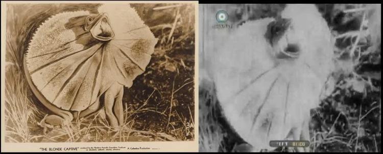 The Blonde Captive The Blonde Captive Alchetron The Free Social Encyclopedia