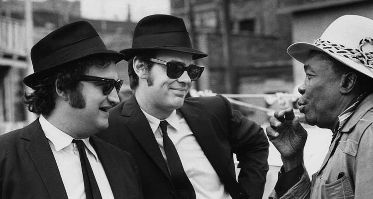 The Blues Brothers The Blues Brothers Oscarsorg Academy of Motion Picture Arts and