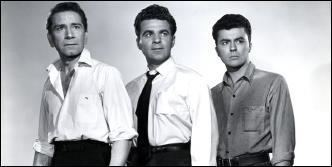 The Brothers Rico A Movie Review by Jonathan Lewis THE BROTHERS RICO 1957