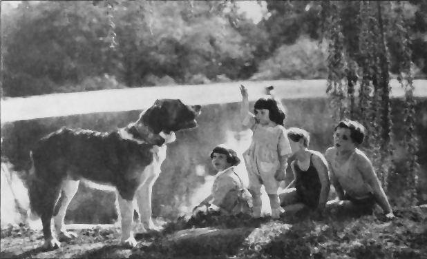 The Call of the Wild (1908 film) The Call of the Wild 1923 film Wikipedia
