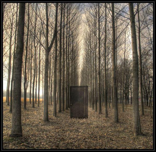 Dark Poetry Explosion Behind The Closed Door Forum FlexWriters