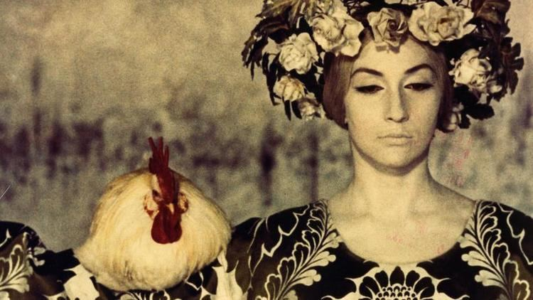The Color of Pomegranates The Color of Pomegranates 1969 MUBI
