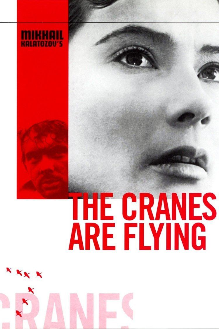 The Cranes Are Flying wwwgstaticcomtvthumbmovieposters17269p17269