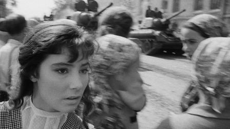 The Cranes Are Flying The Cranes Are Flying 1957 The Criterion Collection