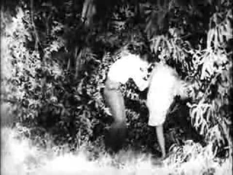 The Creeping Terror The Creeping Terror 1964 YouTube