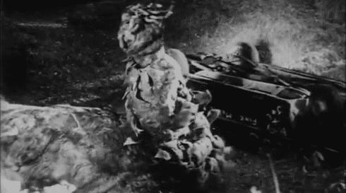 The Creeping Terror The Creeping Terrible aka known as The Creeping Terror 1964 The