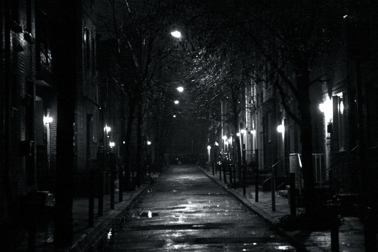 The Dark Alley In The Dark Alley Just Some Important Words