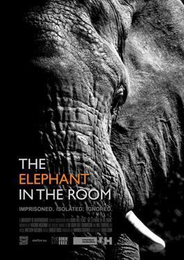 The Elephant in the Room (film) movie poster