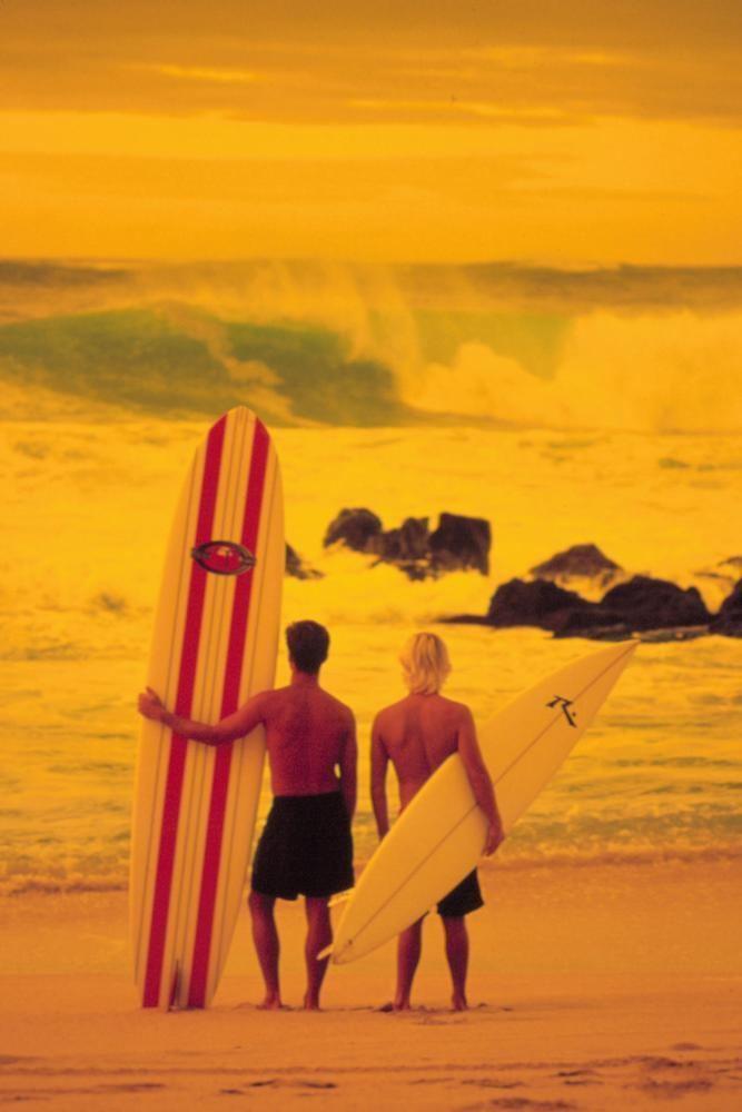 The Endless Summer II Cineplexcom Endless Summer II