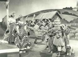The Farmer Takes a Wife (1953 film) Film The Farmer Takes A Wife