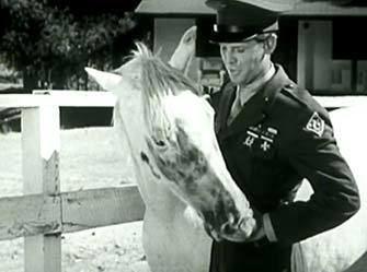 The Fighting Stallion Watch and Download The Fighting Stallion courtesy of Jimbo Berkey