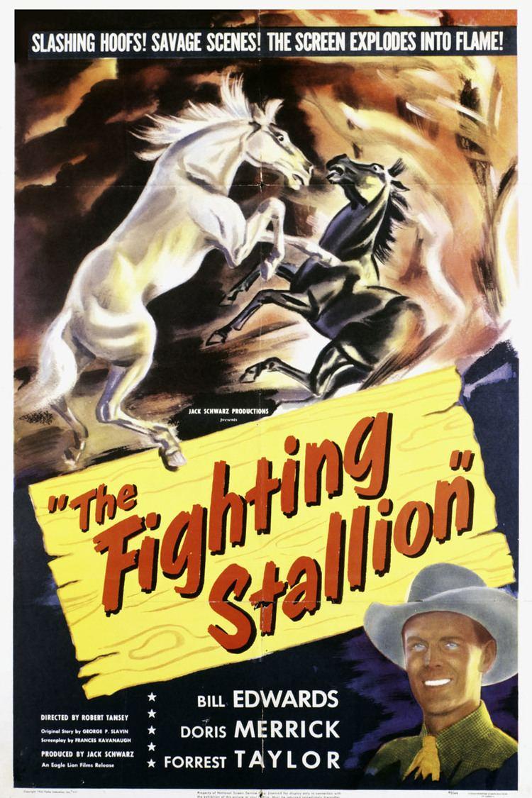 The Fighting Stallion wwwgstaticcomtvthumbmovieposters49545p49545