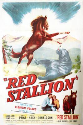The Fighting Stallion The Fighting Stallion 1950 Movie Moviefone