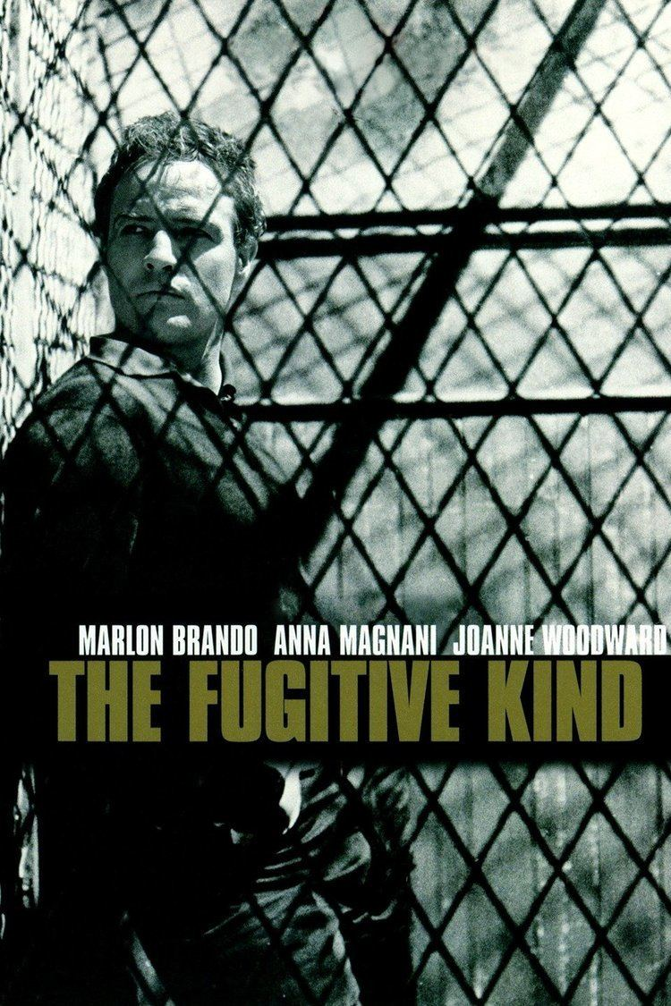 The Fugitive Kind wwwgstaticcomtvthumbmovieposters1310p1310p
