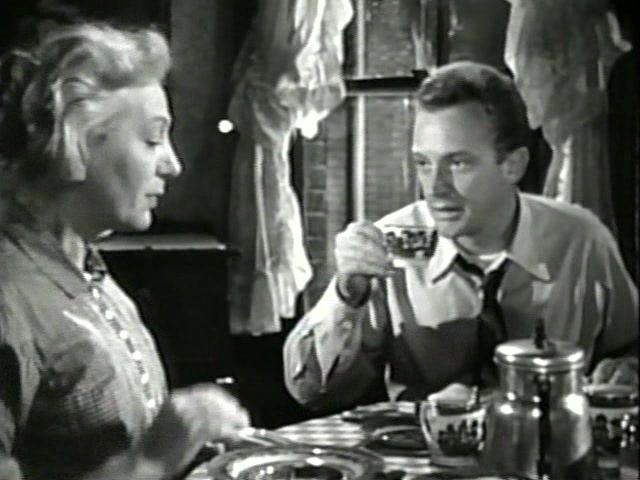 The Glass Menagerie (1950 film) The Glass Menagerie 1950 Irving Rapper Jane Wyman Kirk Douglas