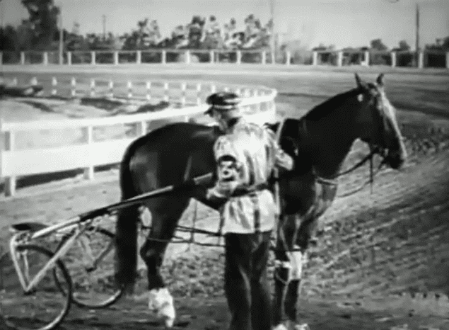 The Great Dan Patch Friday Flicks The Great Dan Patch HORSE NATION