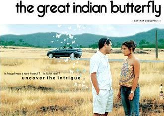 The Great Indian Butterfly Review The Great Indian Butterfly review A regular fairytale
