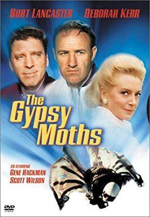 The Gypsy Moths Amazoncom The Gypsy Moths Burt Lancaster Deborah Kerr Gene