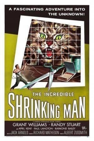 The Incredible Shrinking Man t2gstaticcomimagesqtbnANd9GcQZdXLa2DMpGjO7t