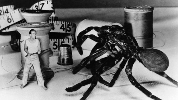The Incredible Shrinking Man The Incredible Shrinking Man Film Society of Lincoln Center