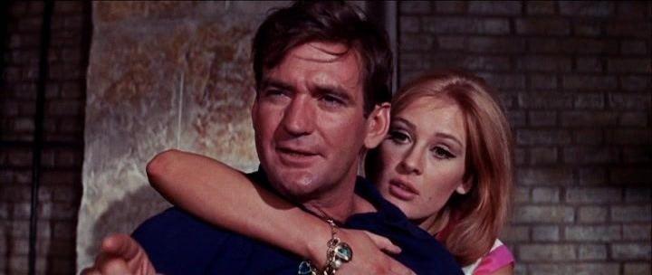 The Liquidator (1965 film) The Liquidator 1965 Jack Cardiff Rod Taylor Trevor Howard Jill