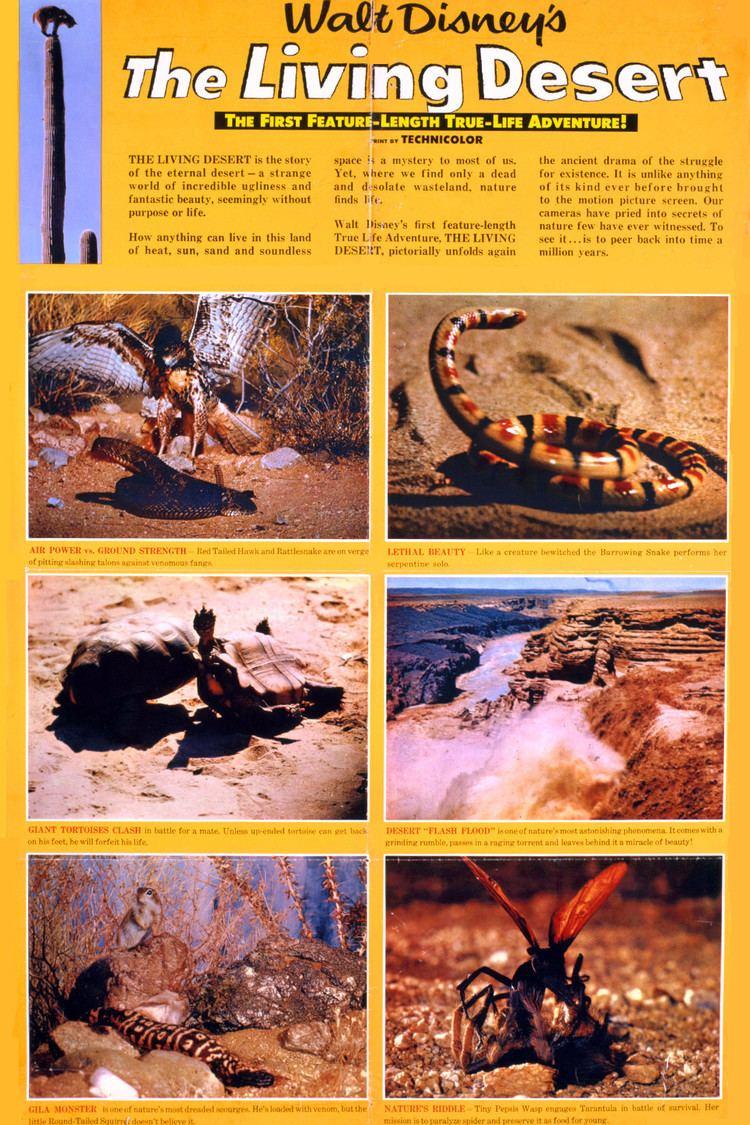 The Living Desert wwwgstaticcomtvthumbmovieposters43972p43972