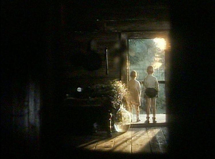 The Mirror (1975 film) Mirror Zerkalo Tarkovsky 1975 Aesthetics Of The Mind