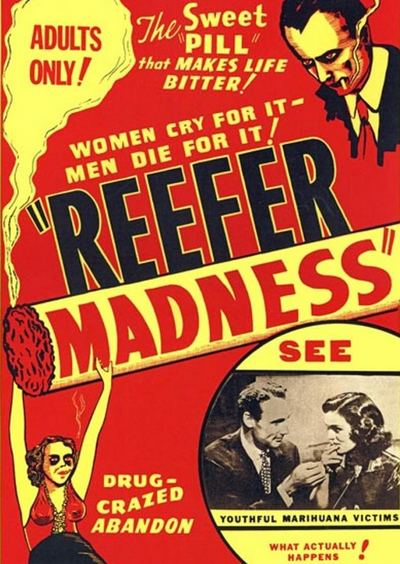 The Pace That Kills Download The Madness Trilogy Reefer Madness Tell Your Children