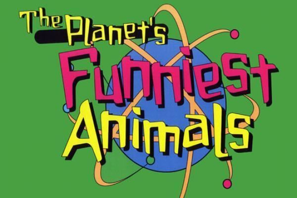 The Planet's Funniest Animals The Planet39s Funniest Animals etv