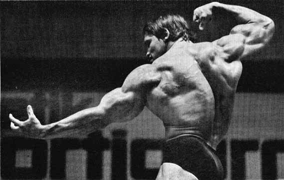 The Professional Bodybuilder of Century Mr Universe ARNOLD