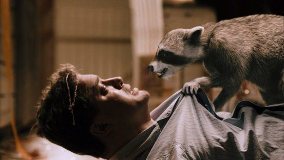 The Raccoons on Ice movie scenes Brendan Fraser left in a scene from 2010 s Furry Vengeance a movie ahead