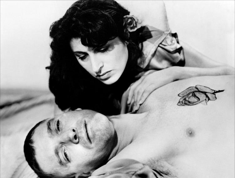 The Rose Tattoo (film) The Rose Tattoo 1955 Pretty Clever Films