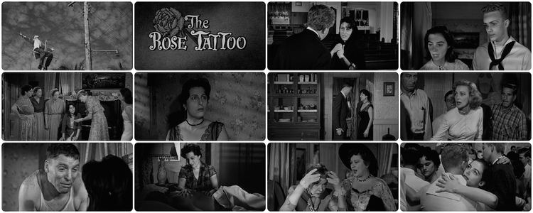 The Rose Tattoo (film) Last Film I Watch The Rose Tattoo 1955 Cinema Omnivore